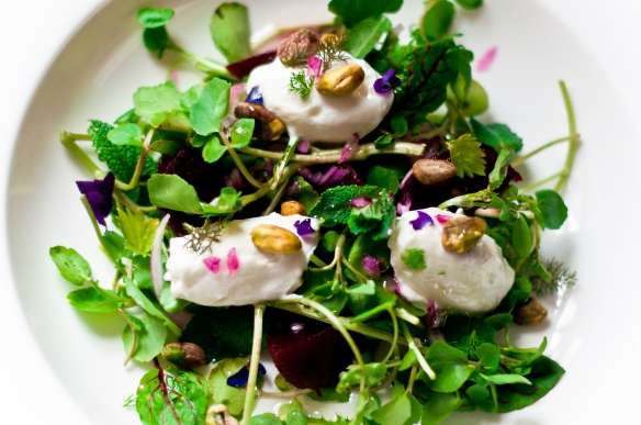 beetroot, orange blossom, pistachio, greek yoghurt salad