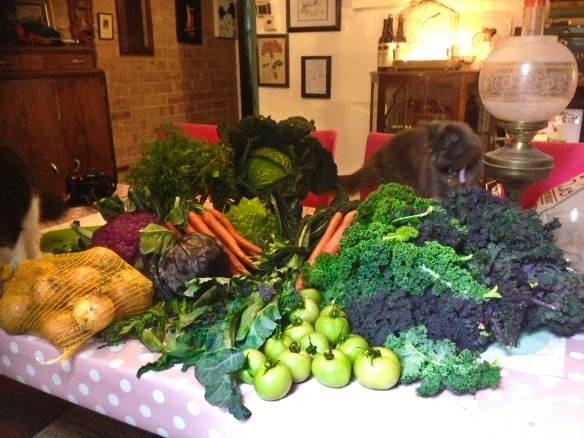 Piles of incredible veg grown just a few miles away for less than £10