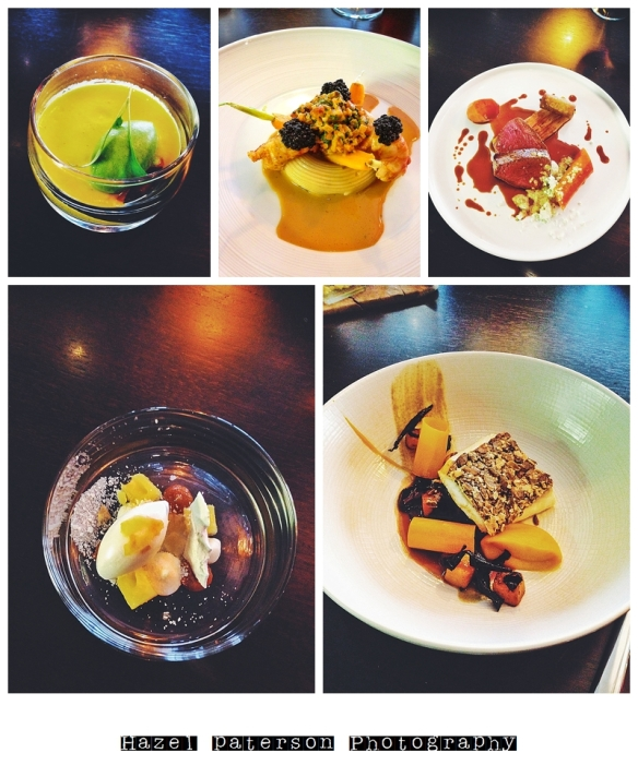 some of the courses I had at Alimentum, extraordinarily good food.