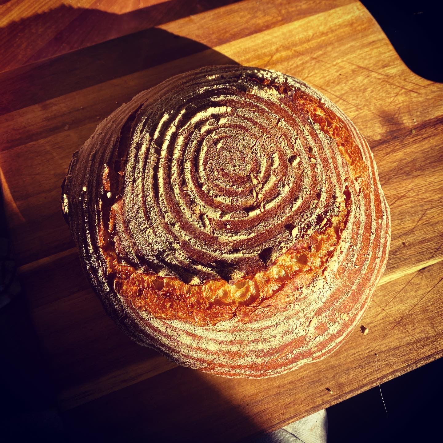sourdough top